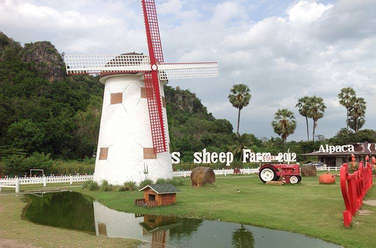 swiss-sheep-farm-hua-hin-l